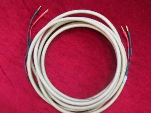 英国 和弦 Carival 银喇叭线 3米