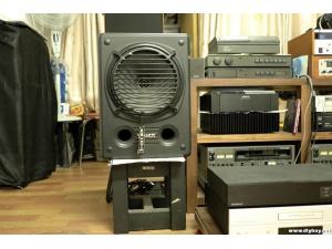 天朗TANNOY 录音室专业版本监听CPA12同轴音箱